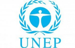 UNEP-Logo-300x195